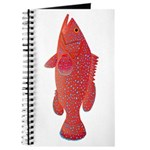 Coral Hind Grouper Journal
