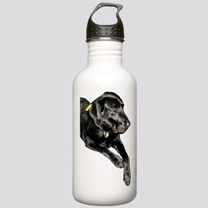 Lying Lab Stainless Water Bottle 1.0L
