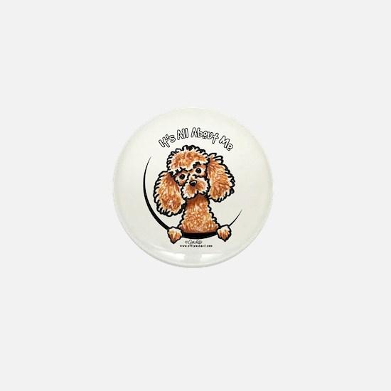 Apricot Poodle IAAM Mini Button