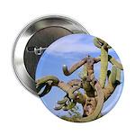 "Tucson Saguaro Monster 2.25"" Button (100 pack)"