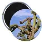 Tucson Saguaro Monster Magnet