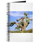 Tucson Saguaro Monster Journal