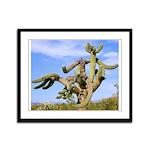 Tucson Saguaro Monster Framed Panel Print