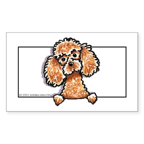 Apricot Poodle Head n Paws Sticker (Rectangle)