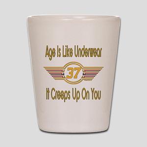 Funny 37th Birthday Shot Glass