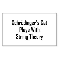 Schrodinger's Cat Plays Sticker (Rectangle)
