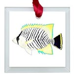 Chevron Butterflyfish Square Glass Ornament