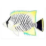 Chevron Butterflyfish 5x7 Flat Cards (Set of 10)