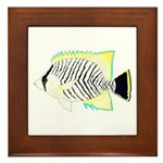 Chevron Butterflyfish Framed Tile