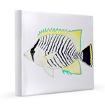 Chevron Butterflyfish 12x12 Canvas Print