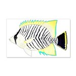 Chevron Butterflyfish Wall Decal