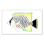 Chevron Butterflyfish Sticker
