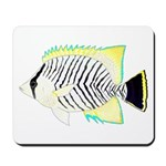 Chevron Butterflyfish Mousepad