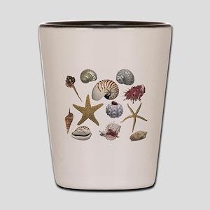 Shells Shot Glass