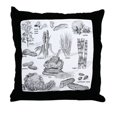 Farm Fresh Food Throw Pillow