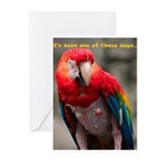 It's Been One of Those Days Greeting Cards (Pk of