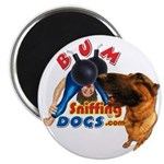 Bum Sniffing Dogs Magnet