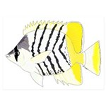 Atoll Butterflyfish 5x7 Flat Cards (Set of 10)