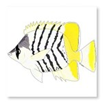Atoll Butterflyfish Photo Wall Tile