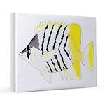 Atoll Butterflyfish 16x20 Canvas Print