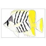 Atoll Butterflyfish Posters