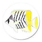 Atoll Butterflyfish Round Car Magnet