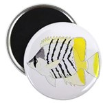 Atoll Butterflyfish Magnets