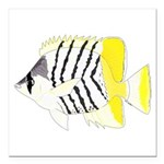 Atoll Butterflyfish Square Car Magnet 3