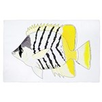 Atoll Butterflyfish 4'x6' Area Rug