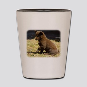 Australian Kelpie 9P022D-063 Shot Glass