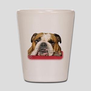 Bulldog 9W099D-039 Shot Glass