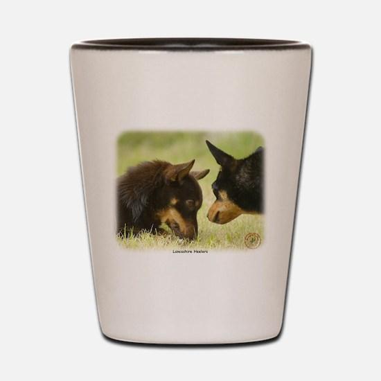 Lancashire Heeler 9R038D-242 Shot Glass