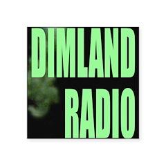 "Dimland Radio Square Logo Square Sticker 3"" X"