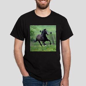 Walker in Spring Dark T-Shirt