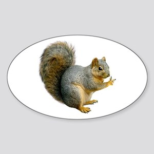Peace Squirrel Sticker (Oval)