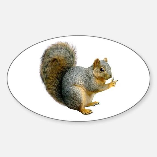 Peace Squirrel Sticker (Oval)