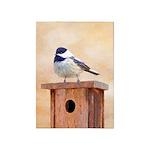 Chickadee on Birdhouse 5'x7'Area Rug