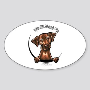 Chocolate Lab IAAM Sticker (Oval)