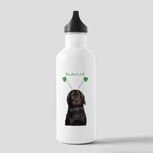 Irish lab Stainless Water Bottle 1.0L