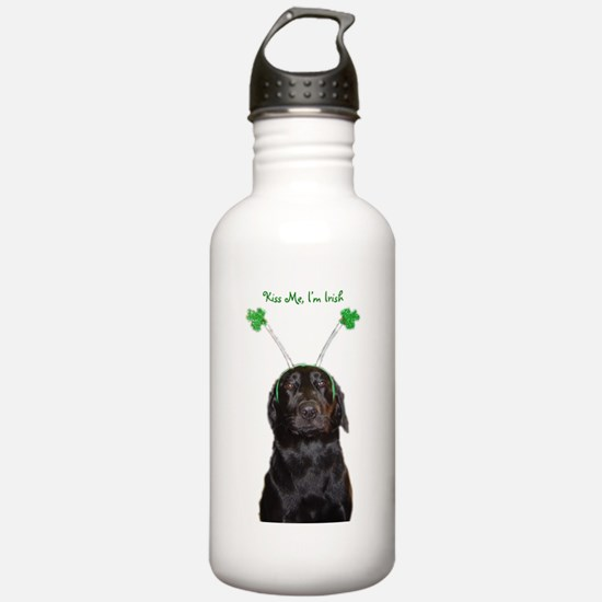 Irish lab Water Bottle