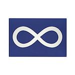 Metis Rectangle Magnet (10 pack)