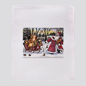 Sleigh Vintage Throw Blanket