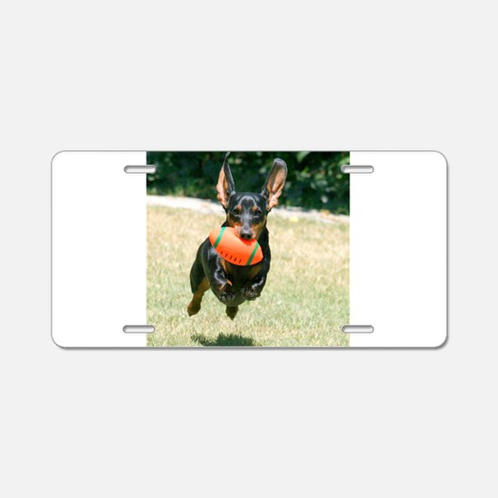 Football Doxie Aluminum License Plate
