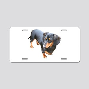 'Lily Dachshund Dog' Aluminum License Plate
