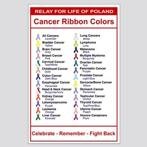 Relay For Life Cancer Ribbon Colors Large Poster