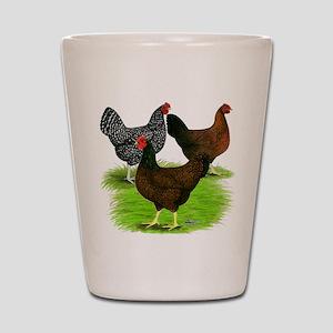 Dark Brown Egg Hens Shot Glass