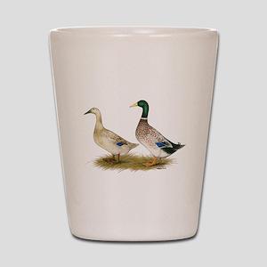 Ducks: Silver Welsh Harlequi Shot Glass