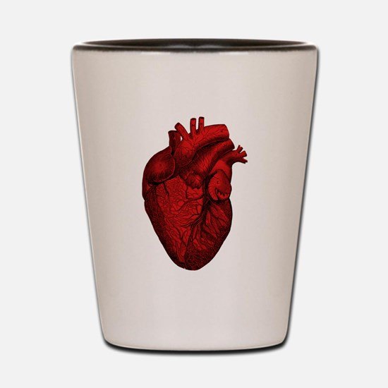 Vintage Anatomical Human Heart Shot Glass