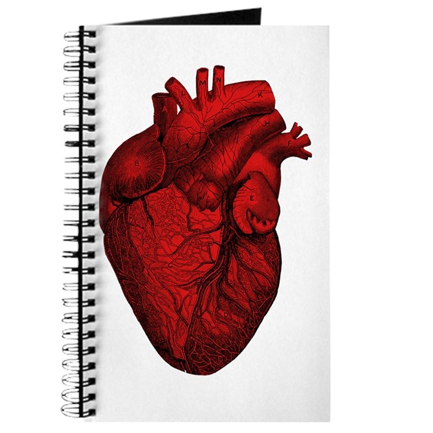 Vintage Anatomical Human Heart Journal By Pounddesigns