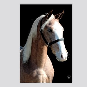 Red Roan Dun Horse Postcards (Package of 8)